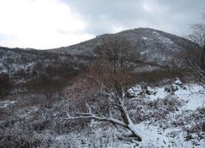 藤原岳は、日本三百名山及び関西百名山、花の百名山に選定されている。